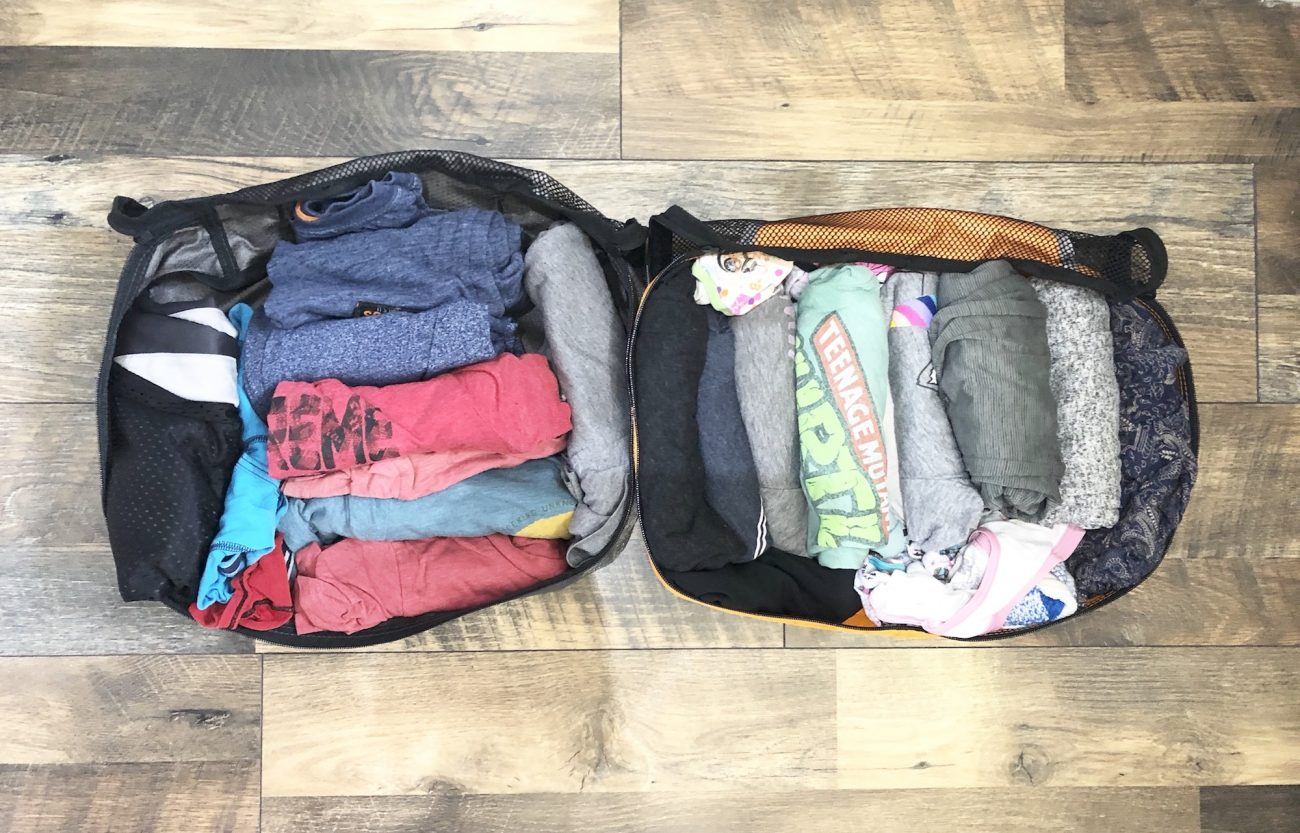 Ada and Jax's eBags Packing Cubes