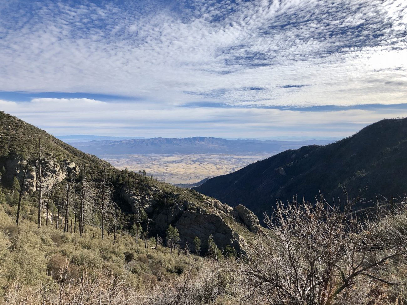 View out over the valley on the Crest Trail near Miller Peak