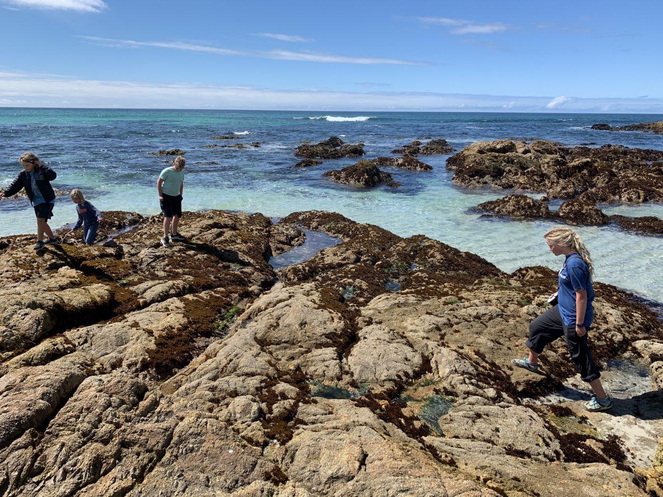 Monterey Bay Tide Pools