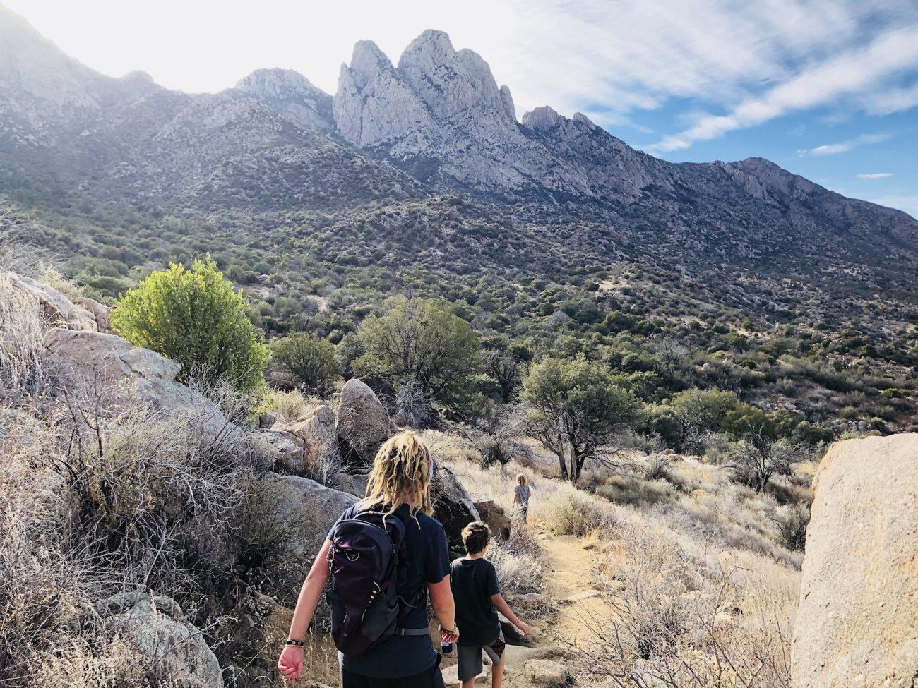 Pine Loop Trail at Aguirre Springs