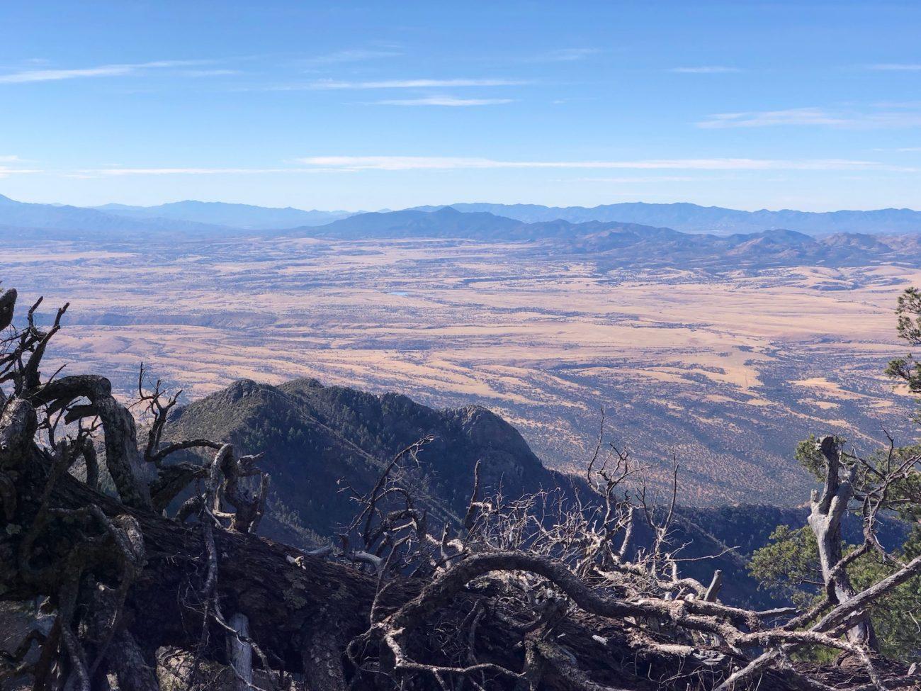 Top of Miller Peak