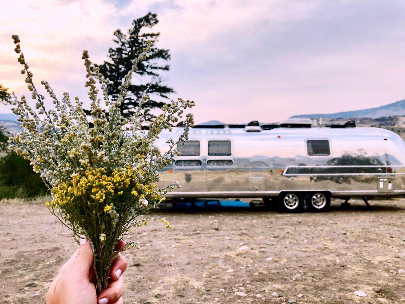 Visit Montana 2