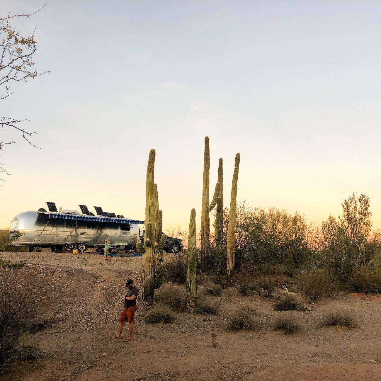Airstream up on hill at sunset near cactus