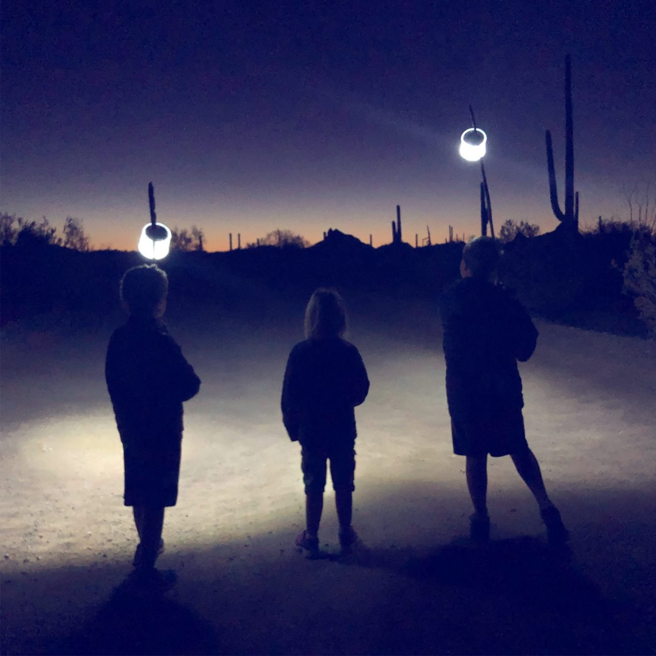Kids walking with lights at night