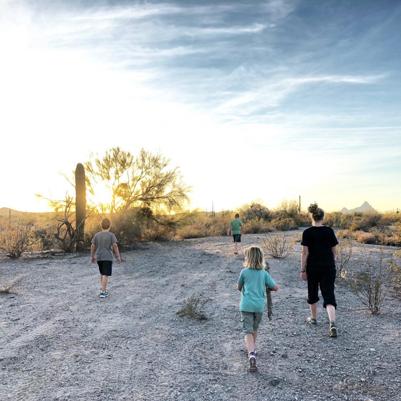 Ajo Sunset Stroll