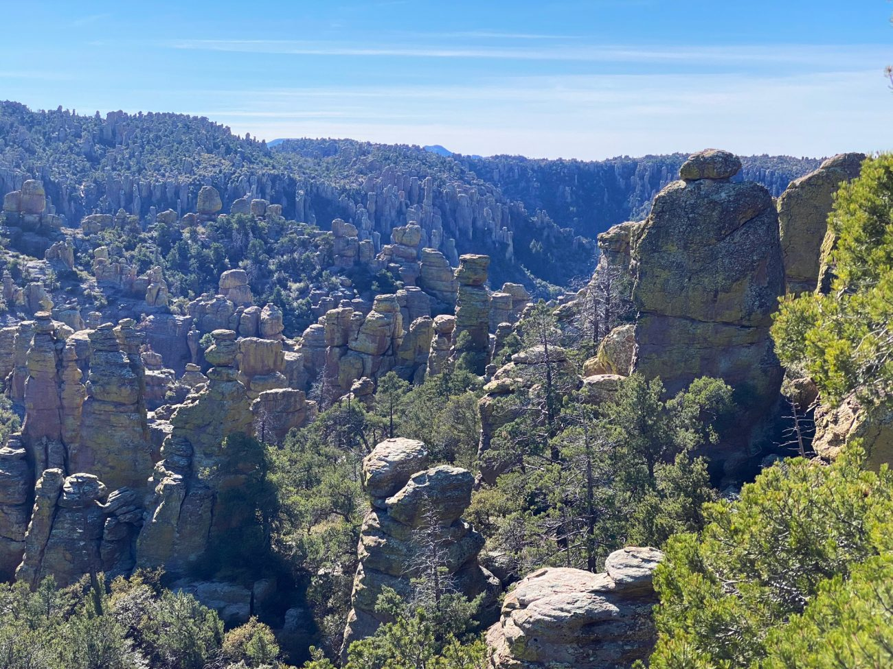 Chiricahua National Monument Vista