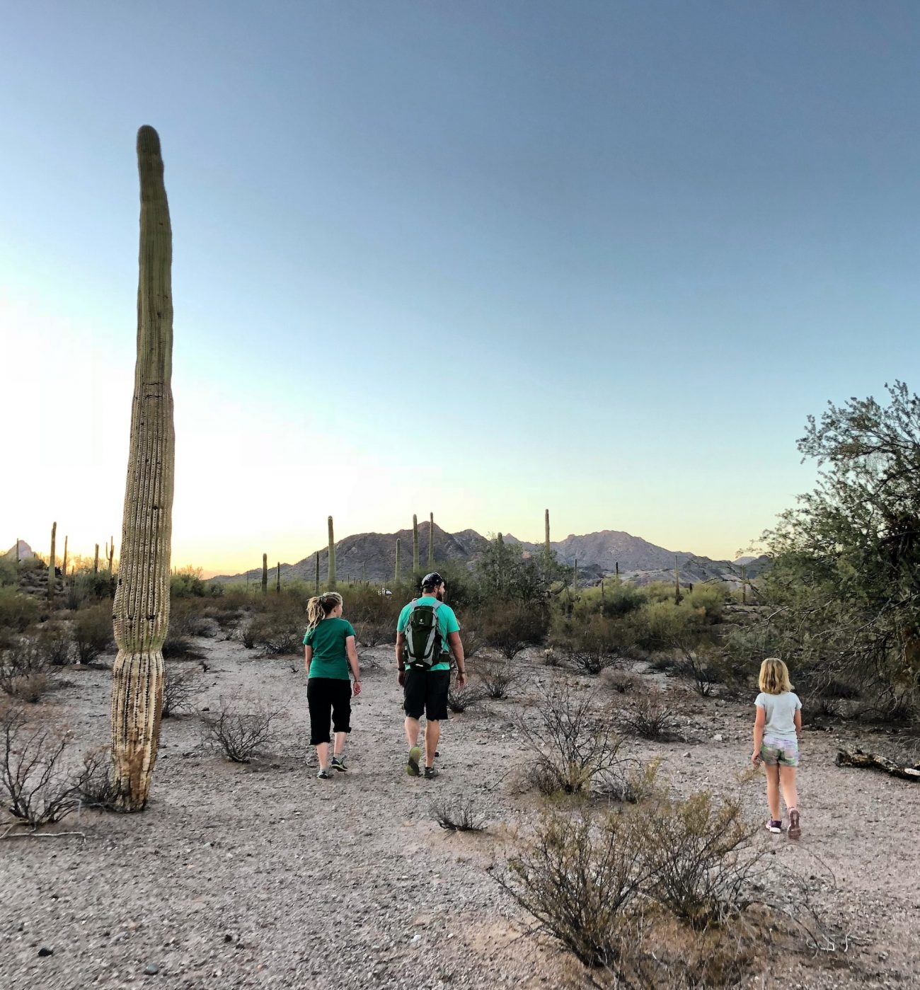 Dad and kids hiking in desert