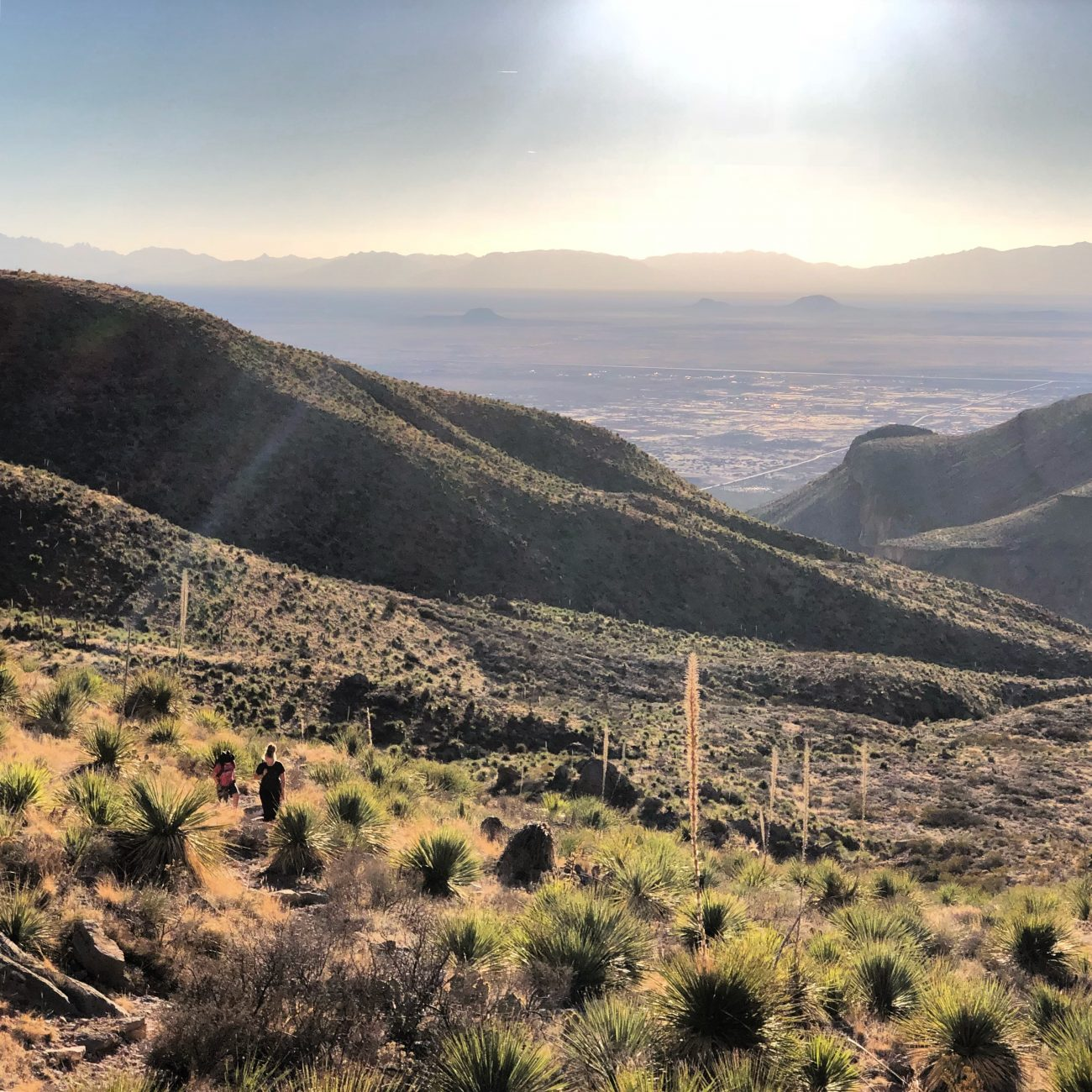 Dog Canyon1