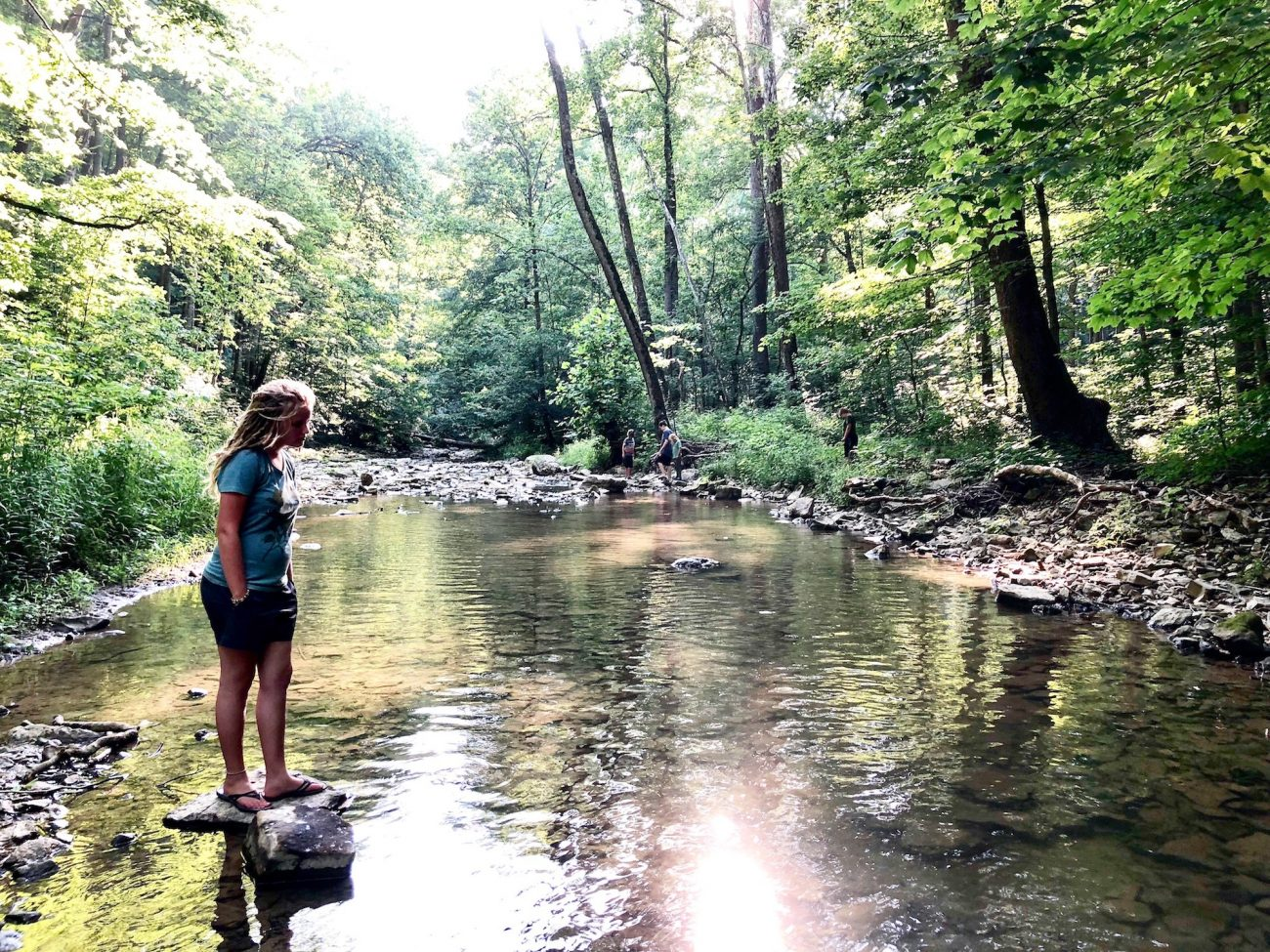 Exploring McCormick's Creek
