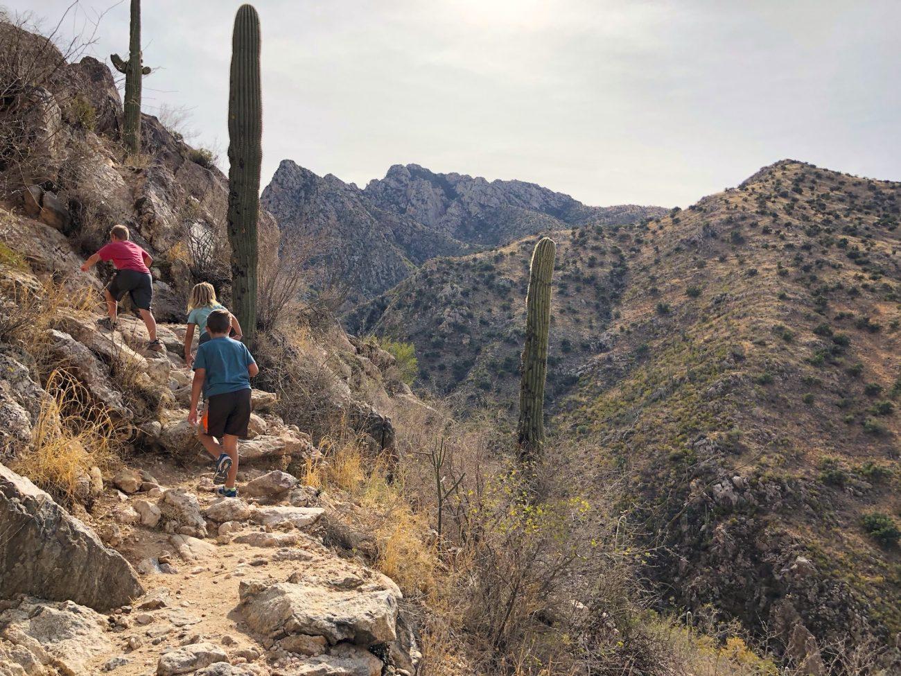 Hiking at Catalina State Park
