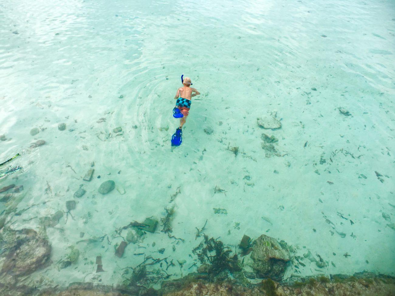Jett goes snorkeling