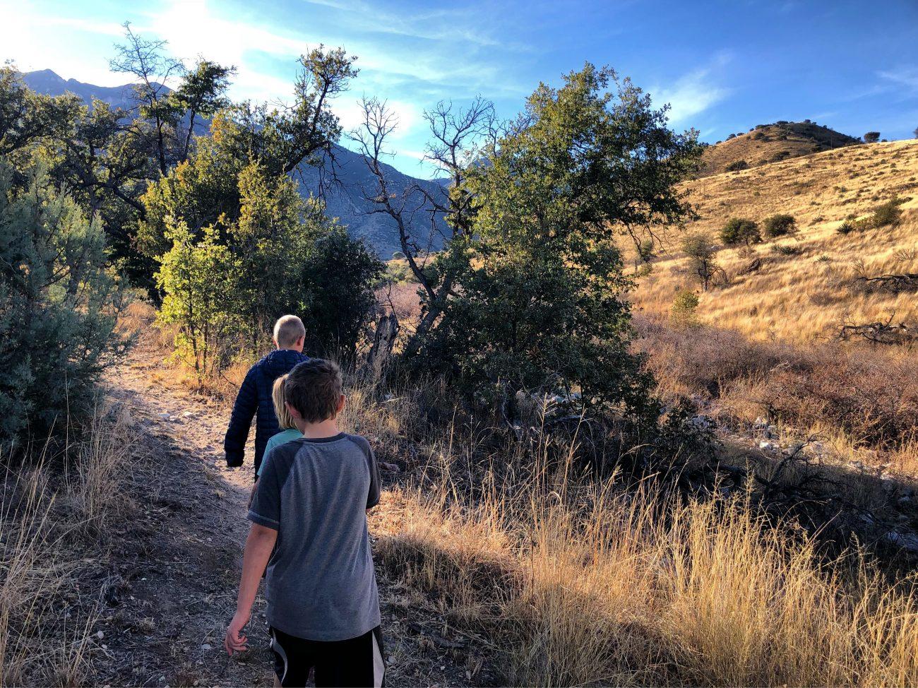Kids Hike Sierra Vista Wash