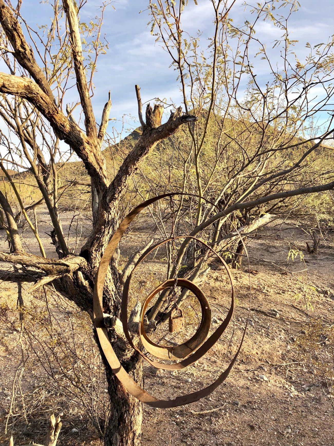 Metal work hanging in tree outside of Ajo, AZ.