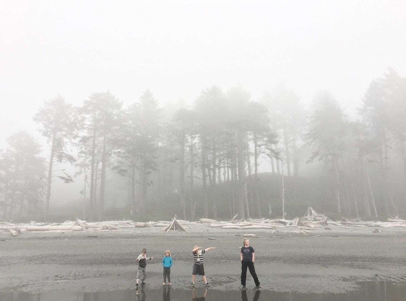 ruby beach walk