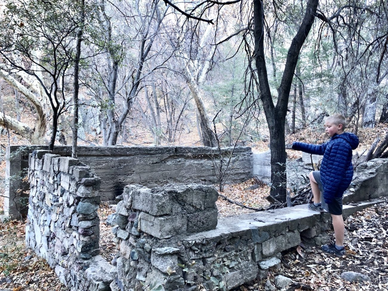 Ruins in Miller Canyon