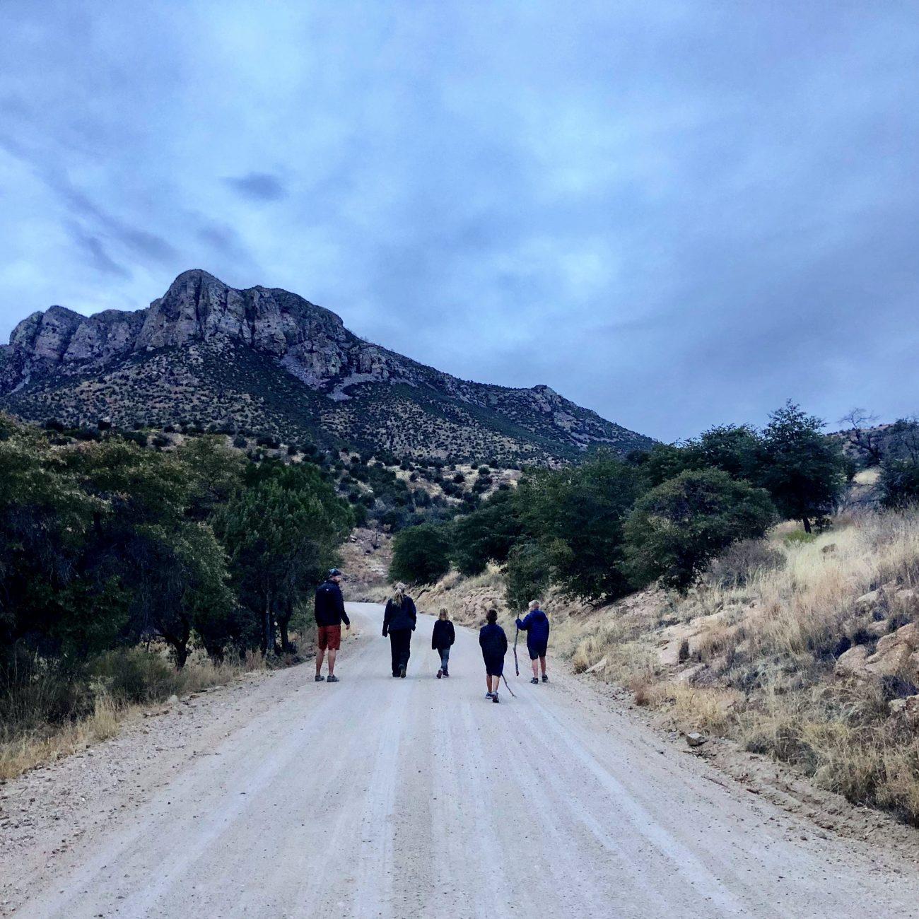 Sierra Vista Family Road
