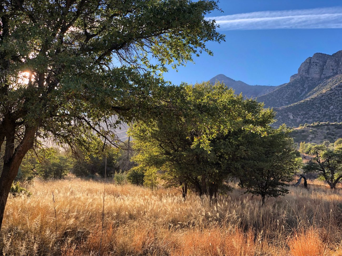 Sierra Vista Sunset Field Mountain