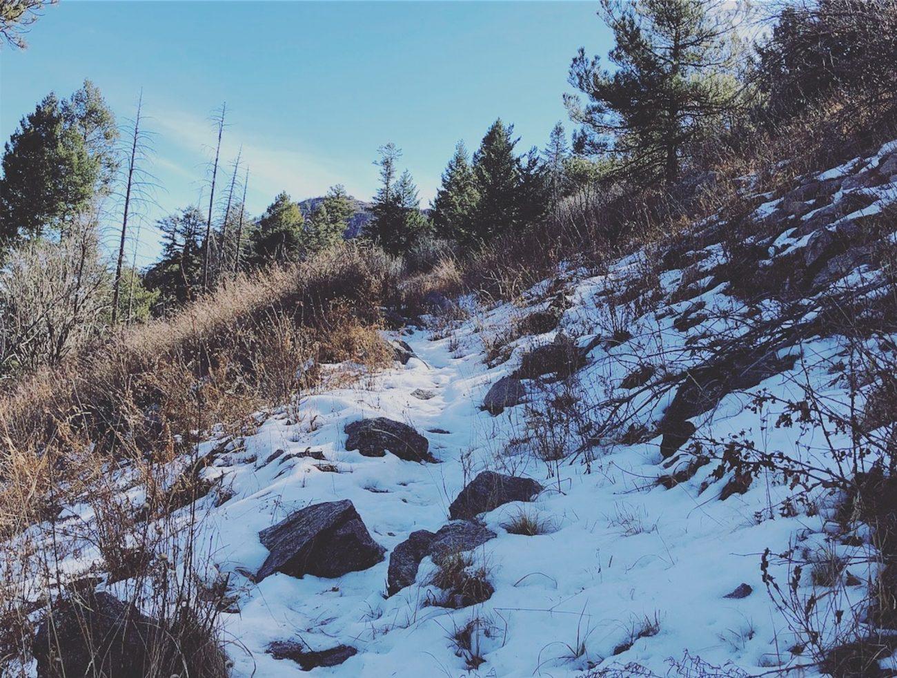 Snow on the Arizona Crest Trail
