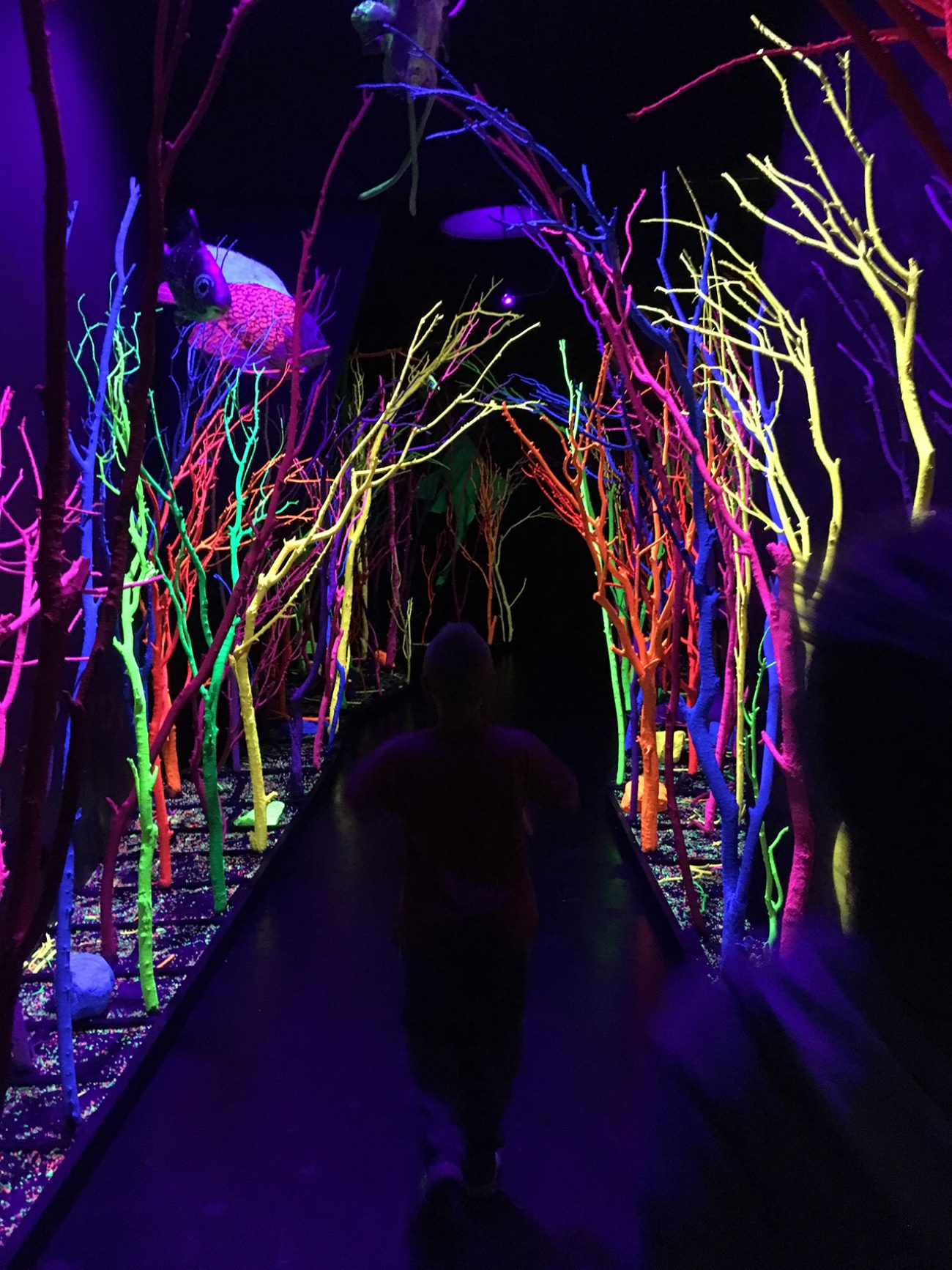 Meow Wolf Colorful Trees