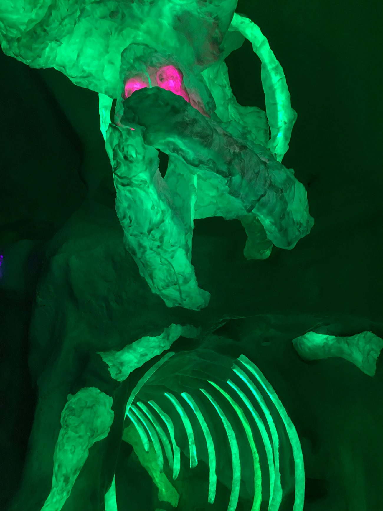 Meow Wolf Green